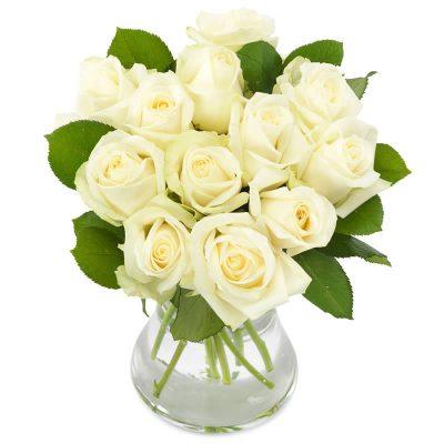 Elegante hvide roser med grønt