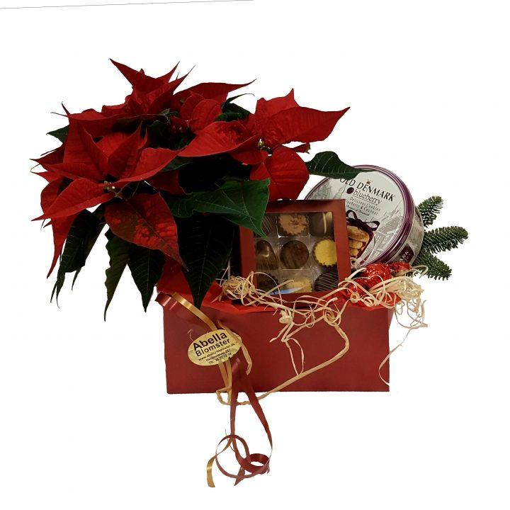 Glædelig jul er en gavekurv med julestjerne, småkager og chokolade + div.
