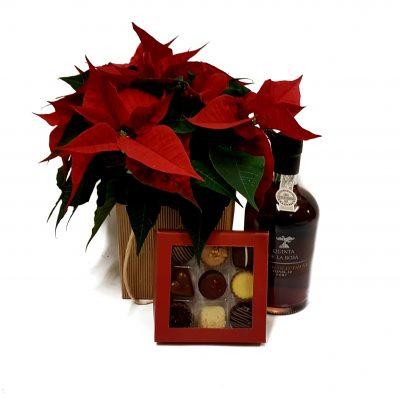 Julevarme varme, send en god flaskeportvin sammen med en julestjerne i naturpose og 9 stk lækker chokolade