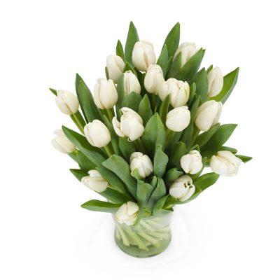 snehvide tulipaner, flotte hvide tulipaner leveret personligt til døren.