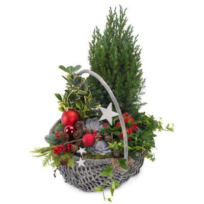 Jule sammenplantning, leveres personligt, julesammenplantning med kugler, planter, stjerner grene m.m.