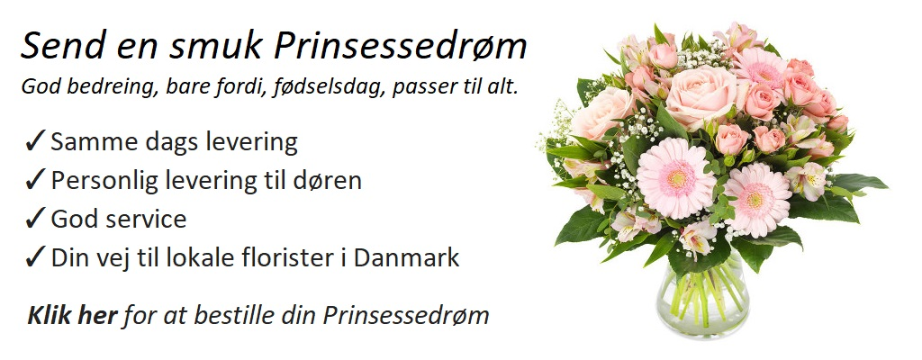 1.forside_prinsessedroem