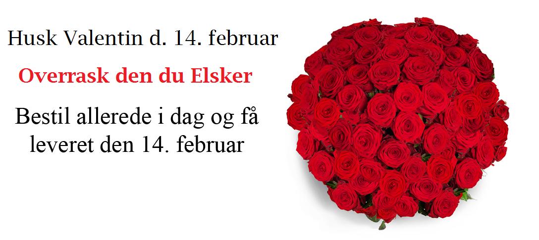Valentin-1