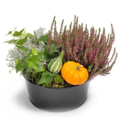sammenplantning til levering, gave, pyntet med efterårs natur.