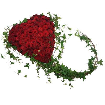 rødt hjerte med efue